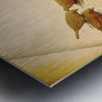 audiobook Metal print