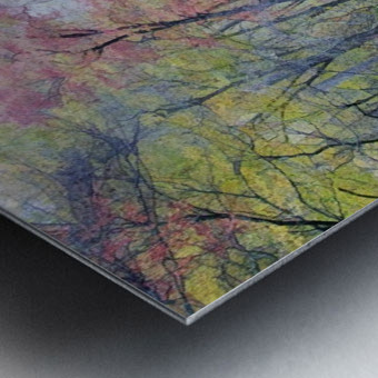 Colorful Fall Evening Metal print