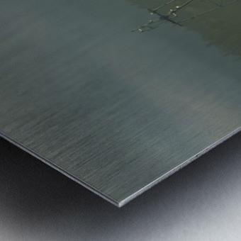 Basking Metal print