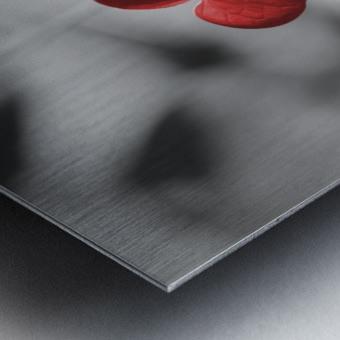 Red heart shaped leaf Metal print