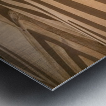 landscape_2_0594 Metal print