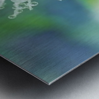 landscape_2_0965 Metal print