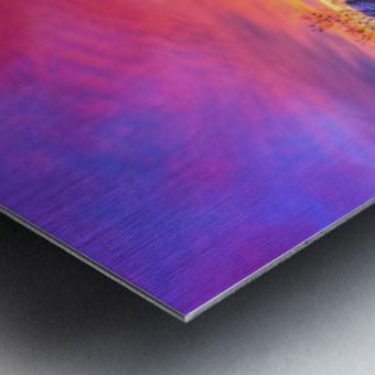 Sonoran_sunset Metal print