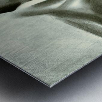 Nude - 23-01-16 Metal print