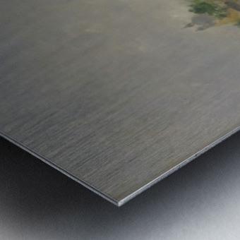 Punta della Dogana Metal print