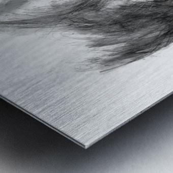 Light and Shadow Metal print