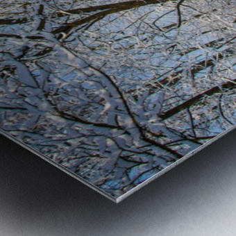 Forest covered with snow Metal print