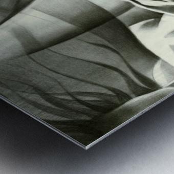 Roundism - 19-07-16 Metal print
