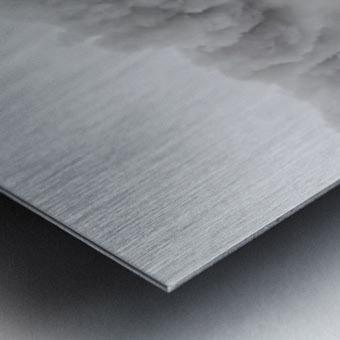 Little-Jumbo Metal print
