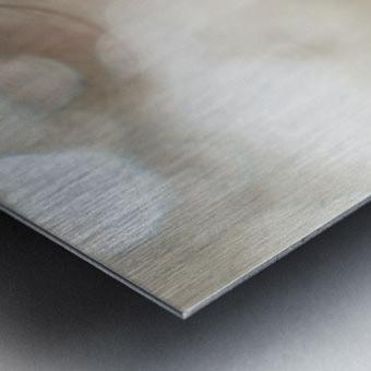 Hi Lite Metal print
