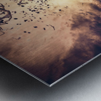 Rhapsody Metal print