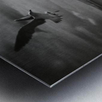 Soul Call Metal print