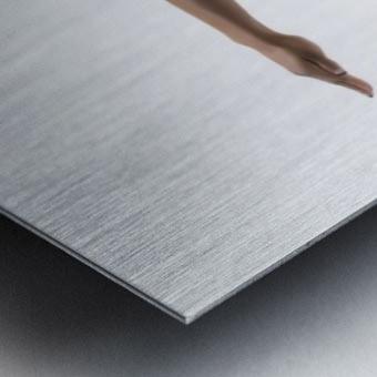 Perfect Balance Metal print