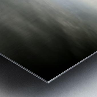 The Sentinels Metal print