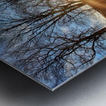 Mill of Shadows Metal print