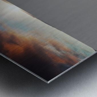 Horseshoe Bend Metal print