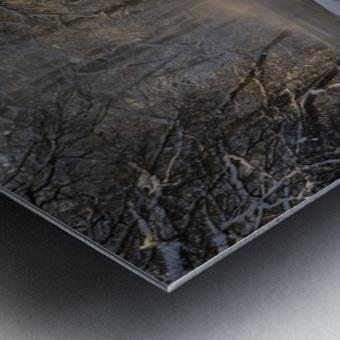 The first light Metal print
