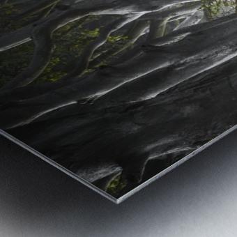 DARK HEDGES Metal print