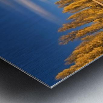 Autumn in Lake Wanaka Metal print