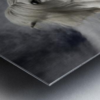 Inseparables Metal print