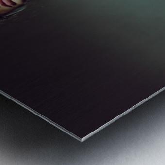 Iva I Metal print