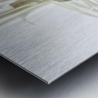 ART.ichoke - 2 Metal print