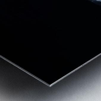 Black & Whale Metal print