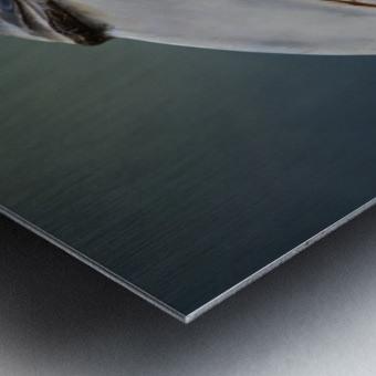Jabrix Metal print