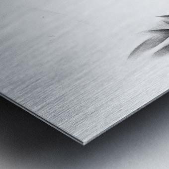 Vlaardingen - 14-09-16 Metal print