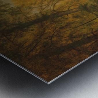 The Trout Pool Metal print