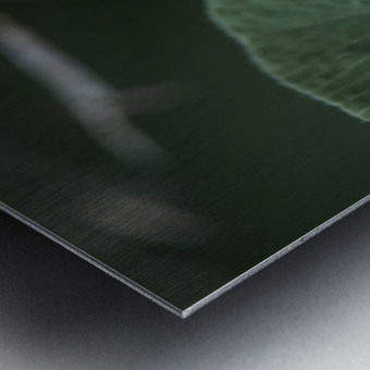 drop Metal print