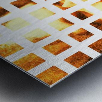 Brotherius V2 Metal print