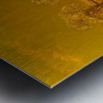 Gold Morning, Lake District, UK Metal print