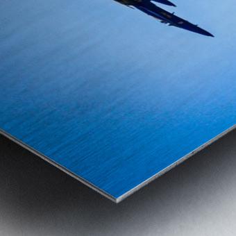 Flight Pattern Metal print