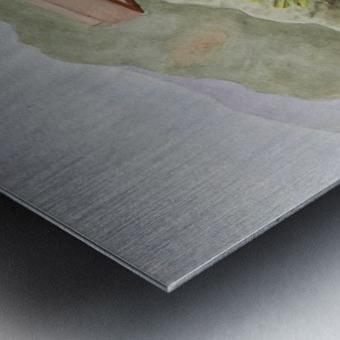 Back Patio Metal print