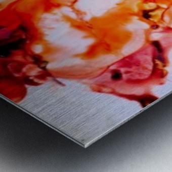 MPS-021 Metal print