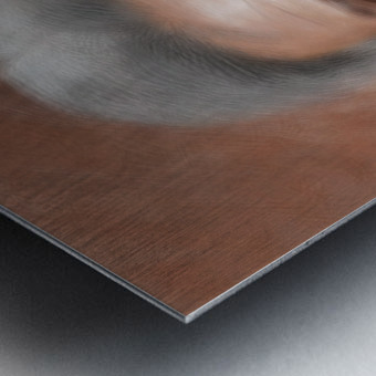 Jonessium V1 - the legend Metal print