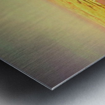 widemountians Metal print