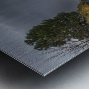 Desert Flyer Metal print