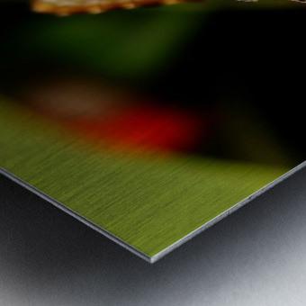 Morph Metal print
