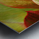 Indonesia, Bali, Close-Up Of Tropical Plants, Leaves Metal print