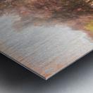 The Raanana Park 1 Metal print