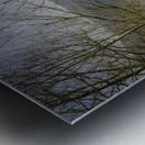 Spring at the River  Metal print