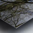 Looking Through Metal print