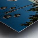 Nara Dreamland Metal print