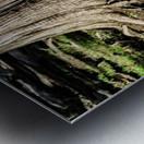 Strength Beneath Metal print