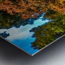 Nature in Fall Metal print