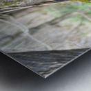 DSC_0223 Metal print