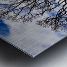 Clear skys Metal print