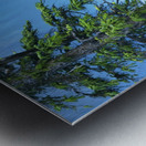 Natural order Metal print